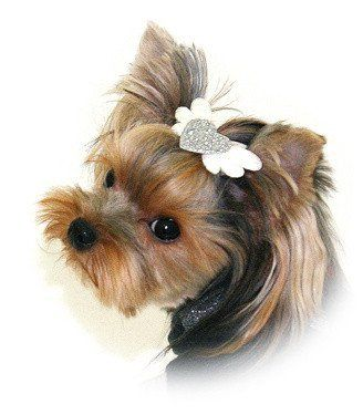 SILVER DOG BARRETTE