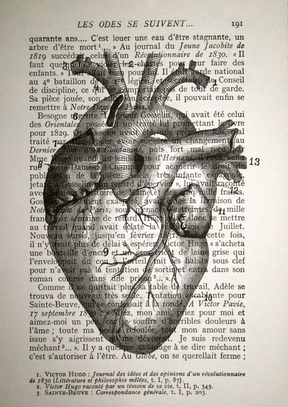For your Valentine :  Anatomical Heart Print on vintage French, by CrowBiz…