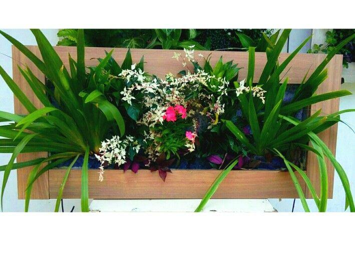 Mejores 15 im genes de cuadros vivos en pinterest for Jardines verticales panama