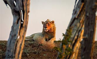 10. Jaci's Lodge. Holidays with Kids Top 10 Family Resorts - South Africa