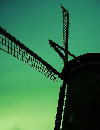 Netherlands BY CLAUDIA JARUFE MONTAGNE