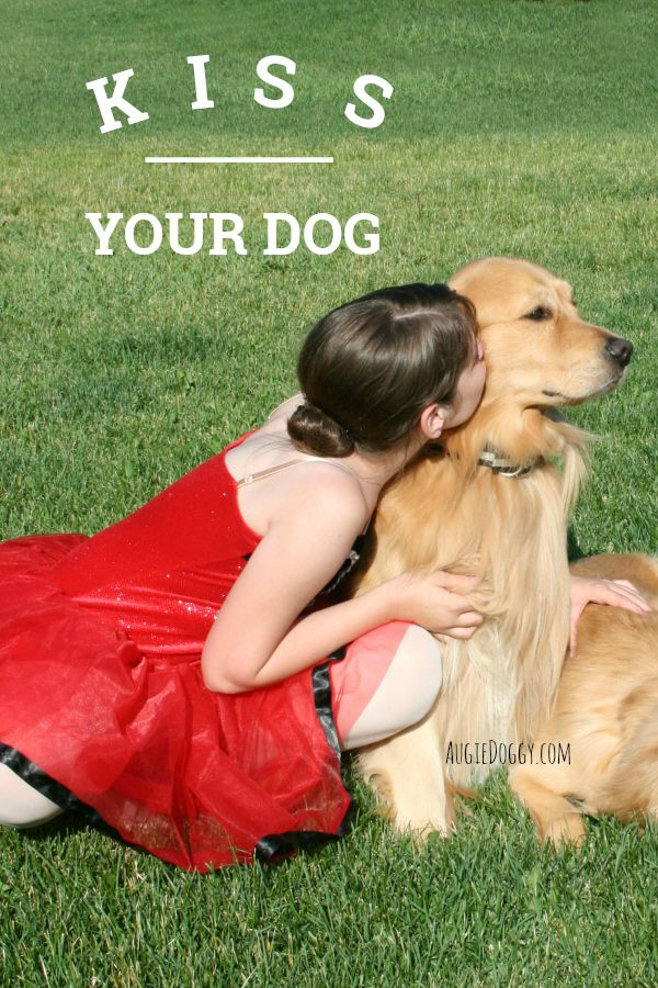 Kiss Your Dog! #quote