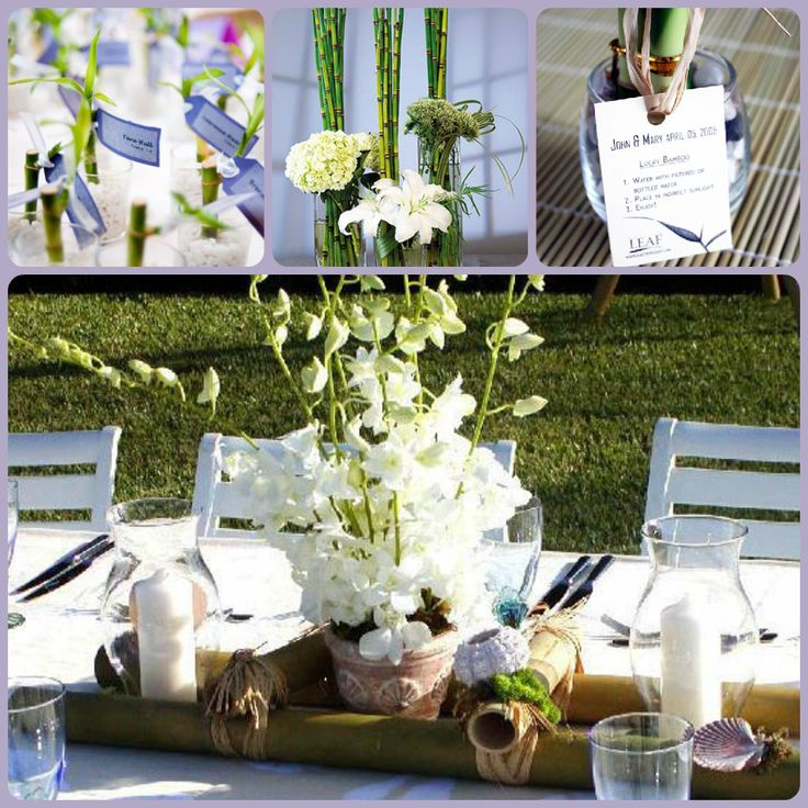 Bamboo Plant On Table: 25+ Best Ideas About Bamboo Centerpieces On Pinterest