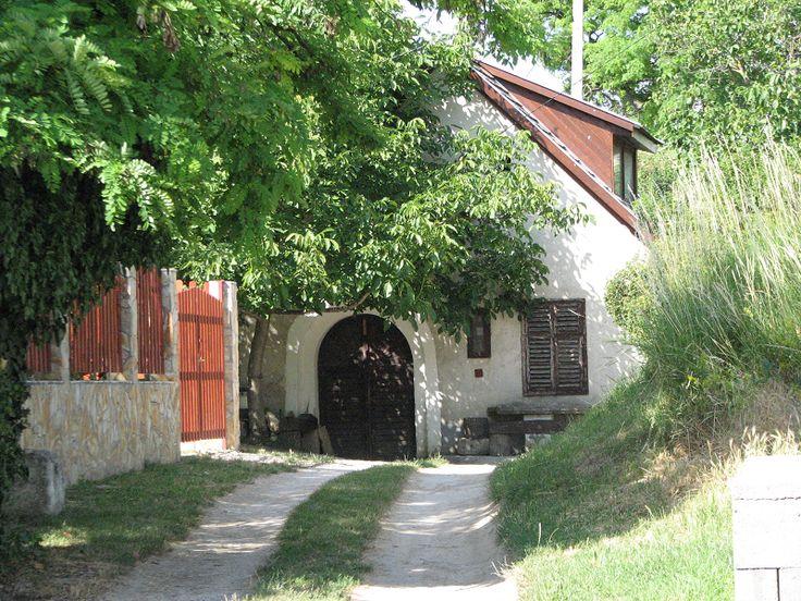 Aligvárom pincesor (Tök) http://www.turabazis.hu/latnivalok_ismerteto_348 #latnivalo #tok #turabazis #hungary #magyarorszag #travel #tura #turista #kirandulas