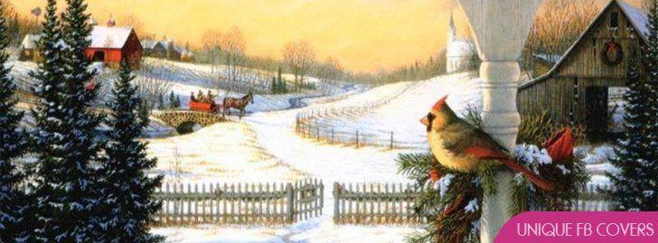 Bird Christmas Facebook Cover