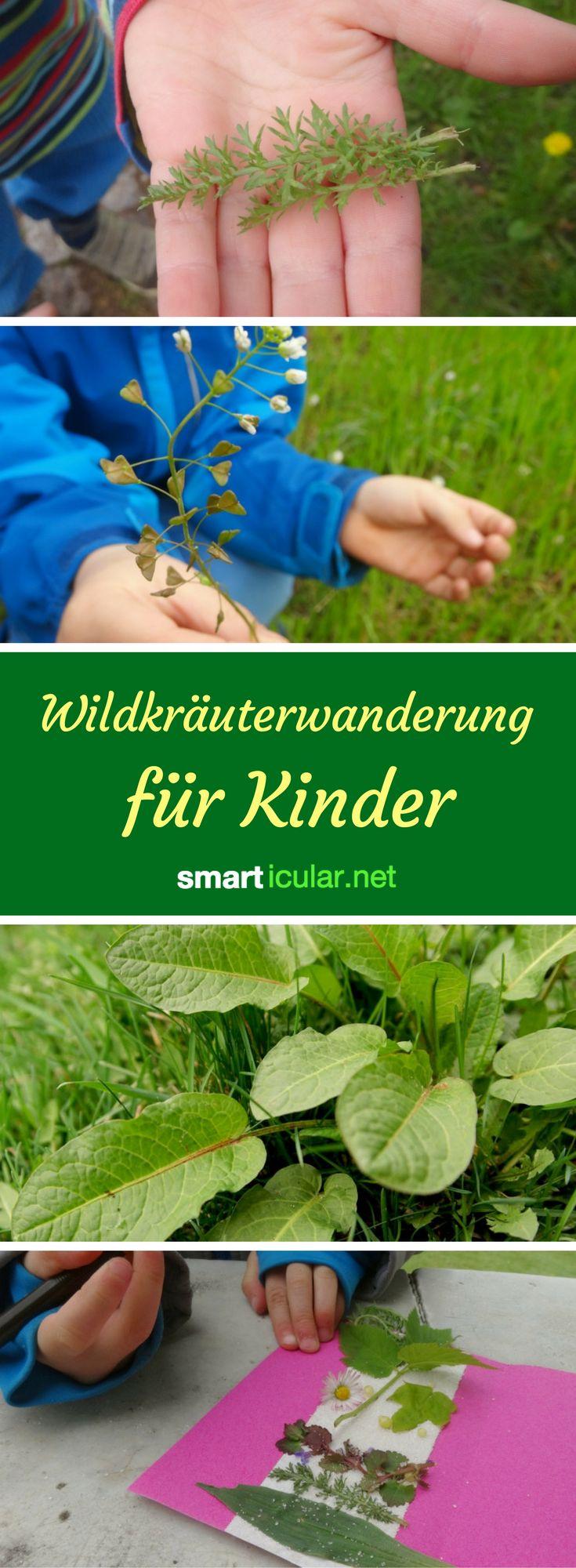 Wildkräuterwanderung für Kinder: Geeignete Kräuter und Rezepte
