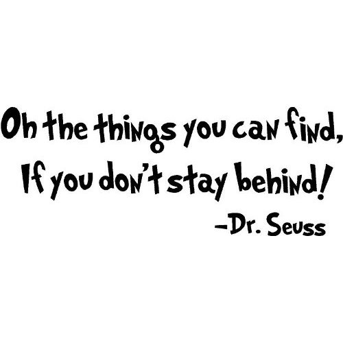 Dr. Seuss Quote You Can Find