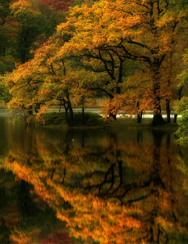 ReflectionPlaces To Visit, Autumn Leaves, Lakes District, Beautiful, Fall, Reflections, Cumbria England, Scenery Photography, Amazing Nature