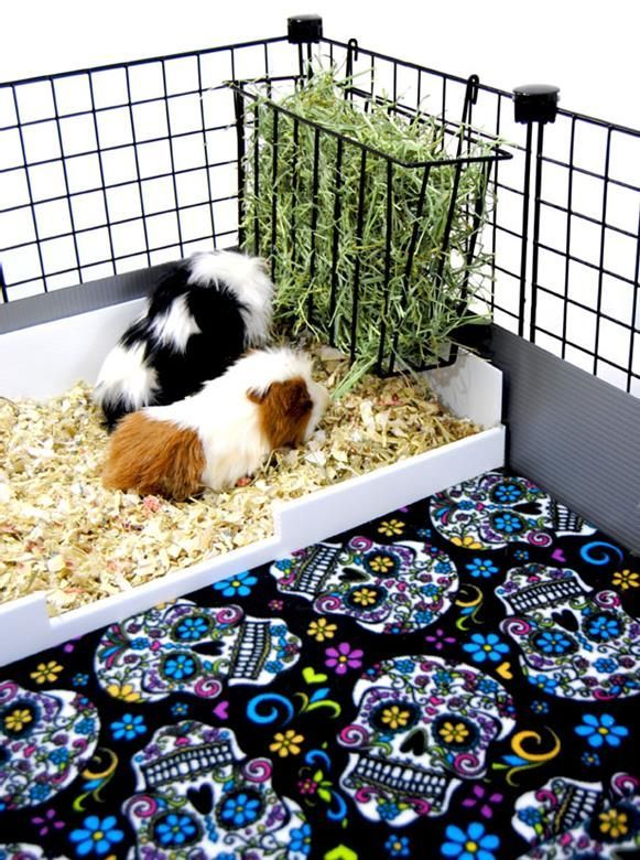 hay rack for C&C guinea pig cage. only takes 1 grid side. perfect.