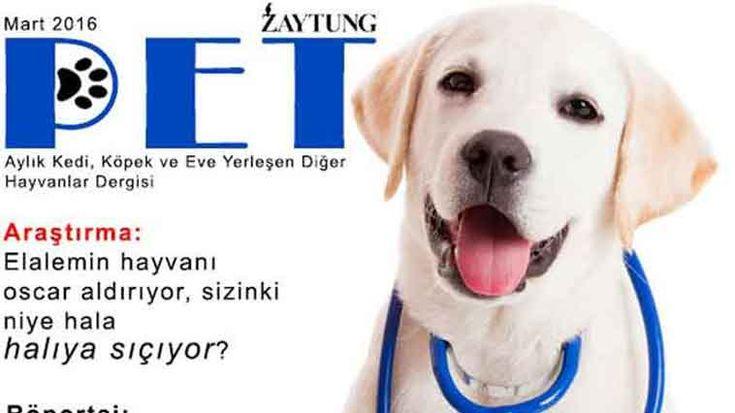 Dürüst, Tarafsız, Ahlaksız haber mottosu ile haber yapan Zaytung tarafından yapılmış 6 pet dergi kapağı bu içerikte.. Detaylar ajanimo.com'da.. #ajanimo #ajanbrian #hayvan #animal #dog #köpek zaytung