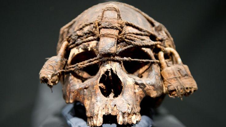 """Gruselig und spannend: Mehr als 300 Schädel aus aller Welt sind im Museum Weltkulturen der Mannheimer Reiss-Engelhorn-Museen ausgestellt. Die Schau """"Schädelkult"""" widmet sich der Bedeutung von Kopf und Schädel in der Kulturgeschichte des Menschen."""