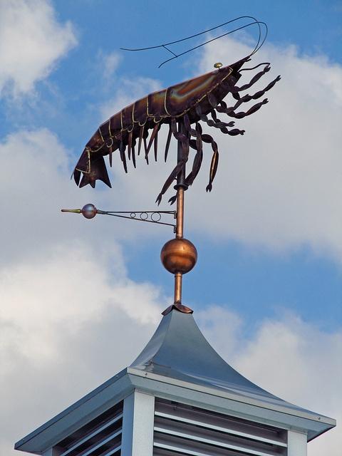 florida shrimp weathervane by al-ien, via Flickr