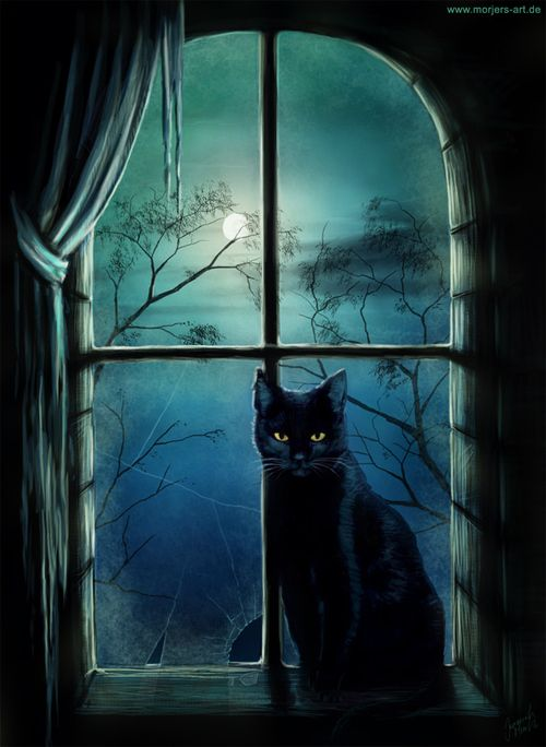 Black cat deep in thought against a window and beautiful moon, so mystic and magical :)