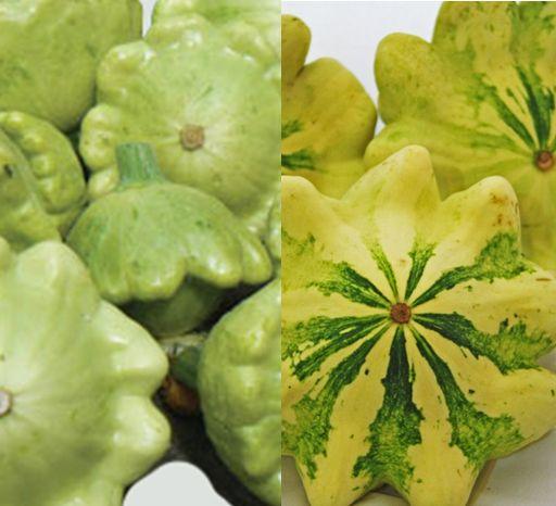 jaune et vert squash french heirloom productive and bushy stripes develop as they mature pick small - Cuisine Provenac2a7ale Jaune Et Verte