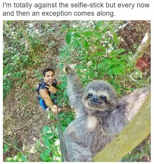 Selfie sticks are for white girls, who just want to take pictures of them self and get attention on Instagram, but I love… http://ibeebz.com