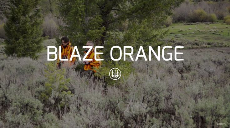 Beretta Blaze Orange