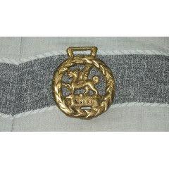 Horse Brass - Wales Dragon Brass