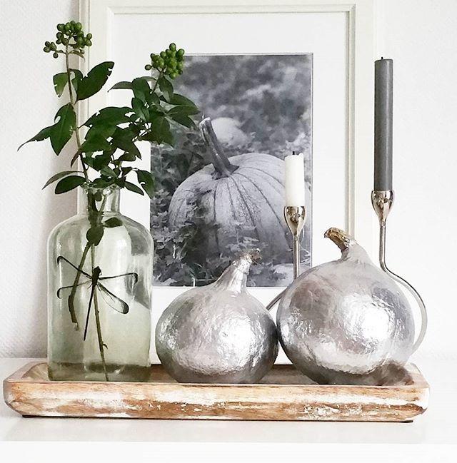 Gotowa do jesieni i wyzwania @interiors_and_design_di_clara . Silver pumpkin ☺ #kokonhome#pumpkinmaniaclara#pumpkin#autumn #silver#dragonfly #glassvase #wood#dynia #dynie #srebrne#ważka#jesień#dekoracje#drewno#butelkazważką#malowanedynie#jesienneklimaty