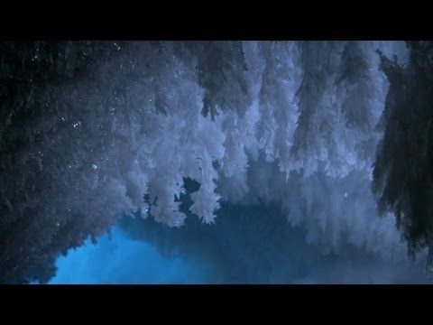 Video Frozen Planet - Under the ice and snow of Antarctica's only active volcano, Mount Erebus, lies a network of caves harboring incredible ice formations that occur nowhere else on earth. (2:20)