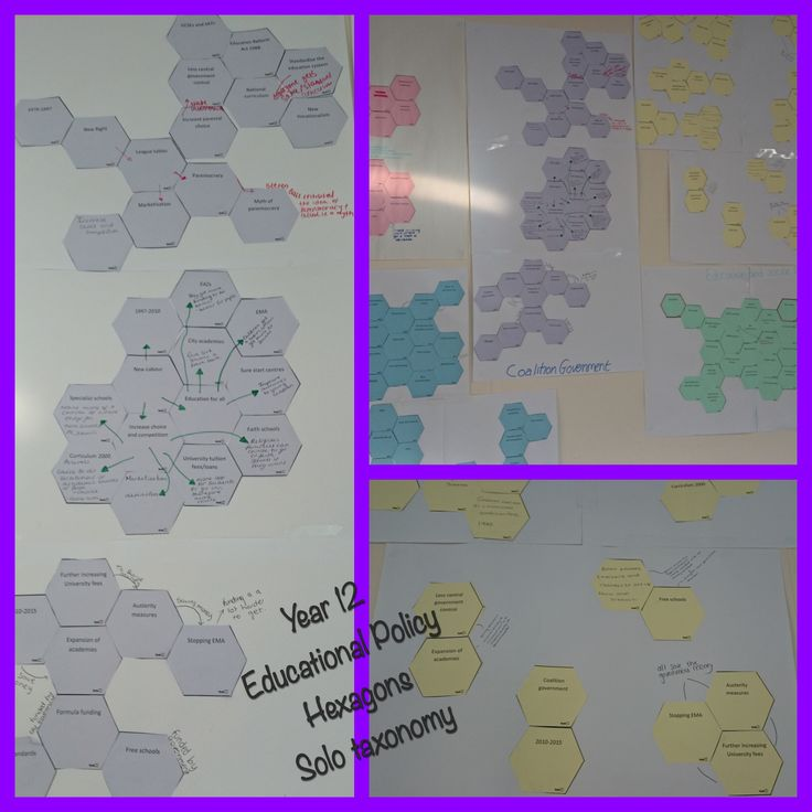 #solotaxonomy Year 12 educational policy