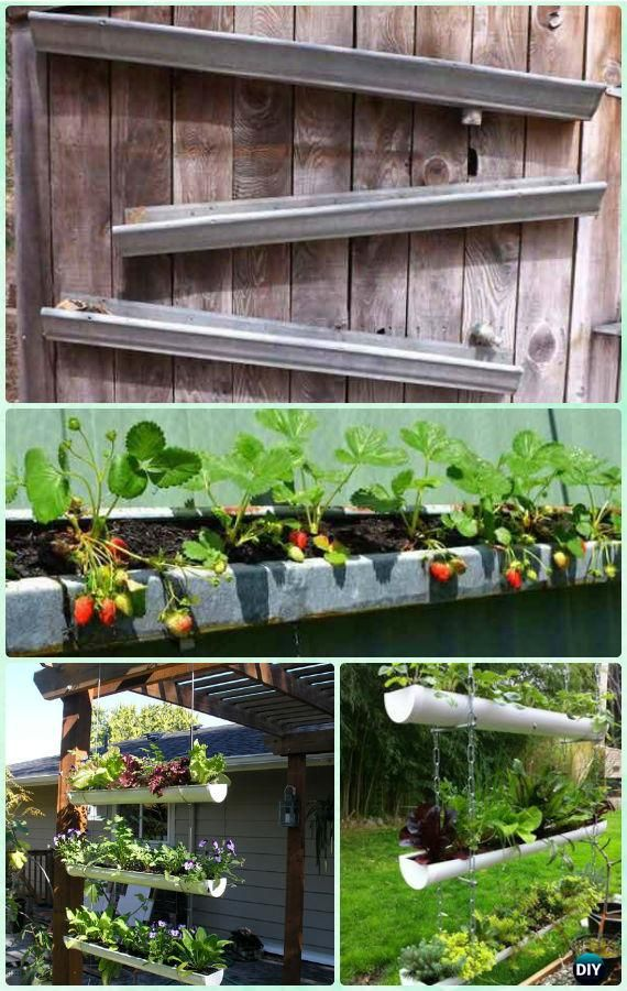 Best 25 strawberries garden ideas on pinterest for Rain gutter planter box