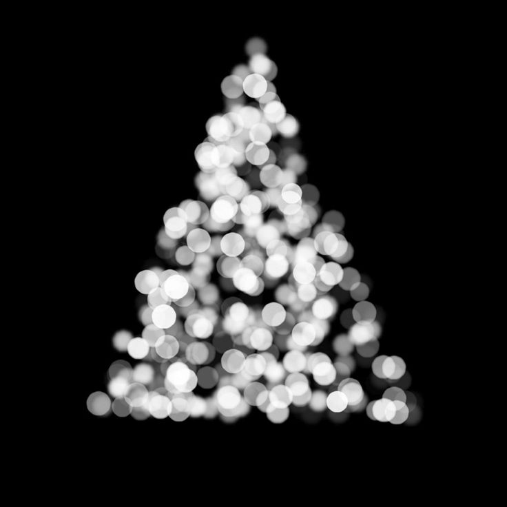 11 best Christmas Tree Tips-Keeping Your Tree Alive & Fresh images ...