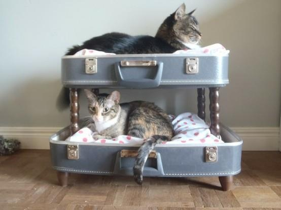 suitcase upcycled as cat bunk beds cute!