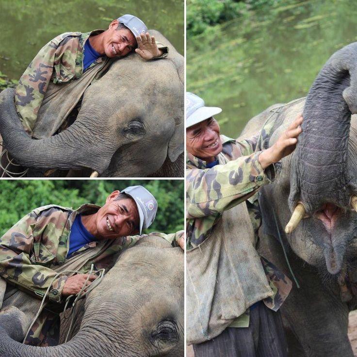 """""""Un amico è un dono che fai a te stesso"""" #charlottebronte  Buongiorno amici! Che ne dite di un viaggio in Laos per incontrare i meravigliosi elefanti asiatici? Esperienza che non dimenticherete mai! #garantito sempre in modo responsabile! No allo sfruttamento  Per info cambogiaviaggi.com  #turismoresponsabile #turismosostenibile #incontroautentico #amicizia #laos #sudestasiatico #wanderlust #travelgram #igerslaos #cambogiaviaggi #particonnoi new pics on Instagram"""
