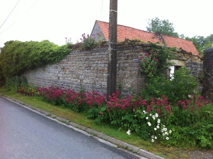 Stone wall. Hermelinghen.