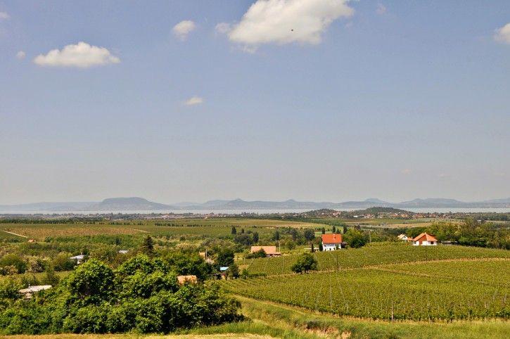 North Shore from Balatonlelle's Kishegy #Balaton #Europe #lake #wine #winery #view #Hungary