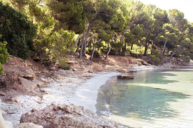 dreamlike desert island