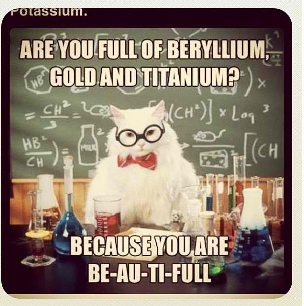Great Pick Up Line, Science Cat