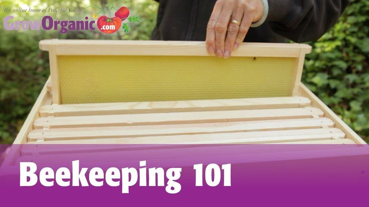Great instructional video for setting up your first bee colony! Beekeeping for Beginners -- Hive Set Up