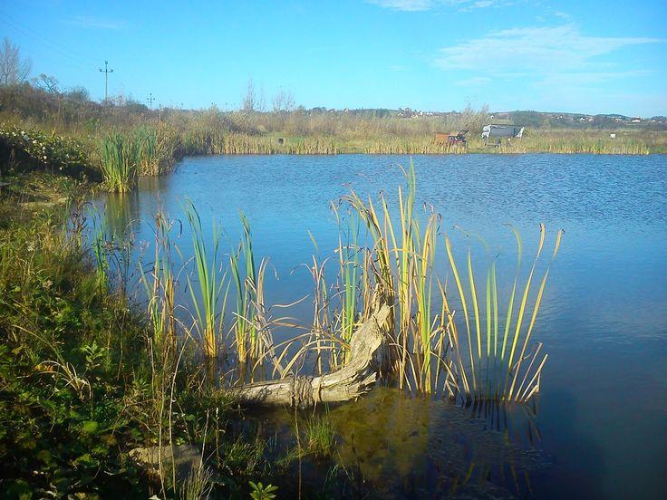 Skawce - stawy rybne #Skawa #Polska #Poland #małopolskie #powiat-suski #Beskidy #Tarnawa-Dolna #Skawce #Zembrzyce #Zarębki #zalew #zapora #Jezioro-Mucharskie #Mucharz #zapora-w-Świnnej Porębie #rzeka-Skawa
