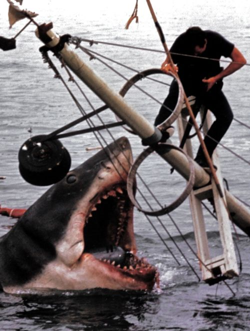Jaws (1975)                                                         You know what scene made you jump