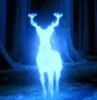 Why a stag? And other Patronus meanings
