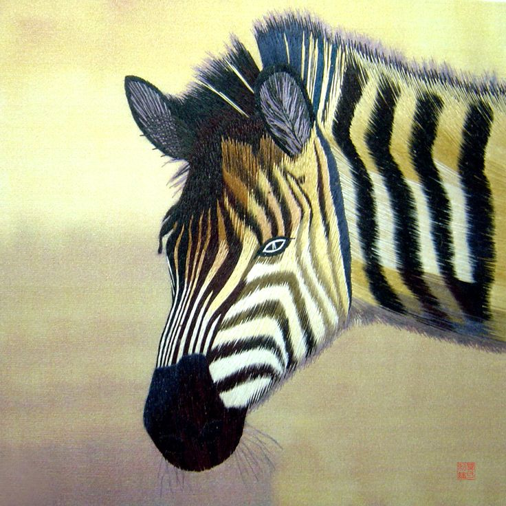 Zebra Profile #Beautif...