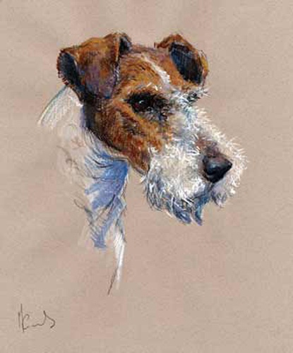 """Artist: Malcolm Coward (UK) Title: """"Fox Terrier"""" (Wire Fox Terrier Head Study) Size: 13½"""" x 12"""" (34cm x 29.5cm) paper size (+/-) Status: Limited Edition of 395 - Artist Signed & Numbered"""