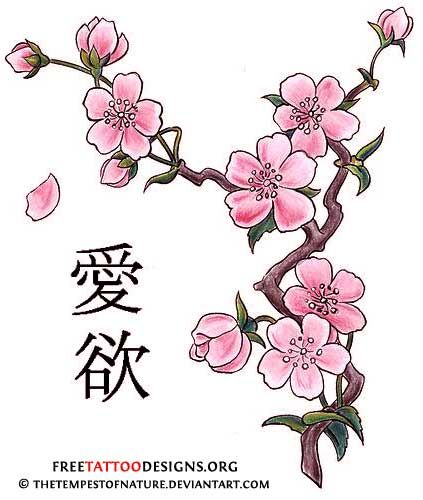 asian cherry blossom tattoo designs - Tattoos - Zimbio- I want my cherry blossoms to be in this style, I love the way the petals are in this
