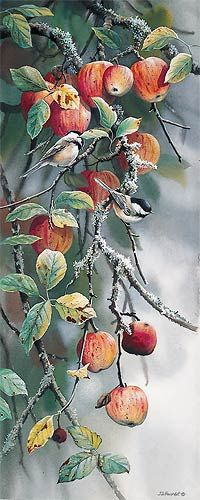 Chickadees and Apples by Susan Bourdet