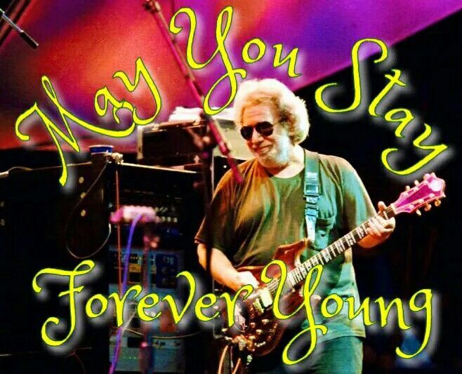 1000 Best Images About The Grateful Dead On Pinterest Editor Madison Square Garden And Janis