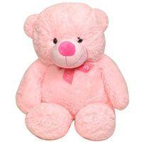 Order this Big n Cute Plush Teddy (2ft)