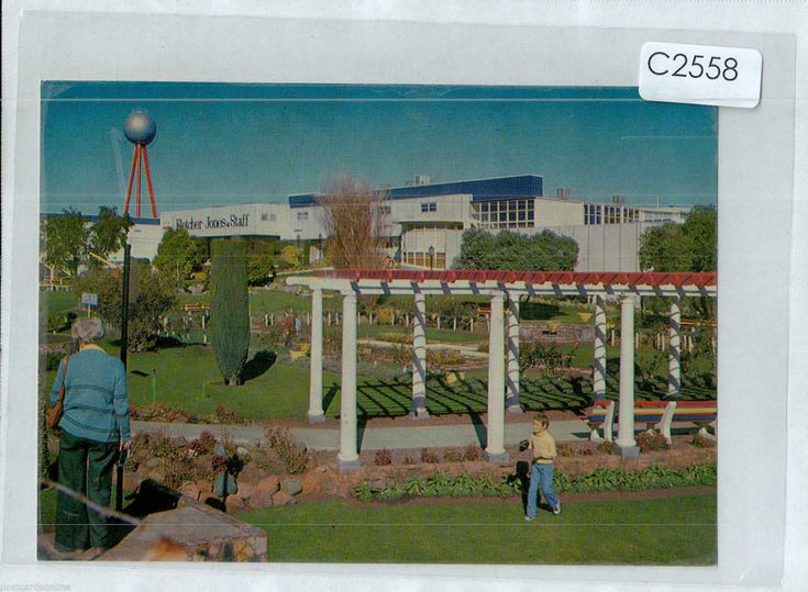 C2558cgt Australia V Warrnambool Fletcher Jones Gardens postcard | eBay