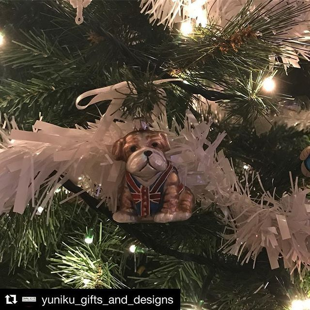 Thanks for sharing @yuniku_gifts_and_designs! He looks great on your tree 🌲 #festive #christmastime #bulldog #englishbulldog  #Repost @yuniku_gifts_and_designs with @repostapp ・・・ I love my handmade Needle Felted Christmas tree decorations very much but I am totally in love with this one... Bulldog Bauble from @bombki go check them out for some stunning additions to your Christmas decoration collection 👌🏻🎄#christmasdecorations