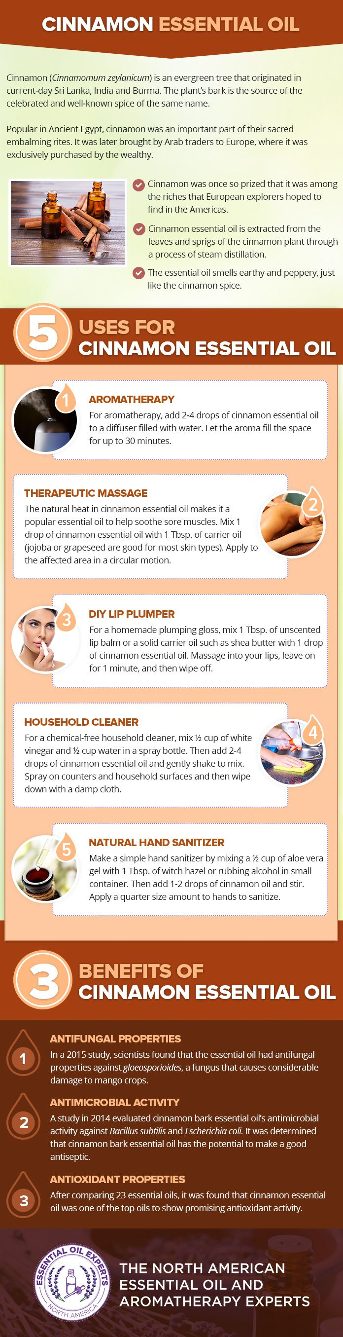 Cinnamon Essential Oil Uses & Benefits Only pay when your order is dispatched www.essentialoilproducts.co.uk