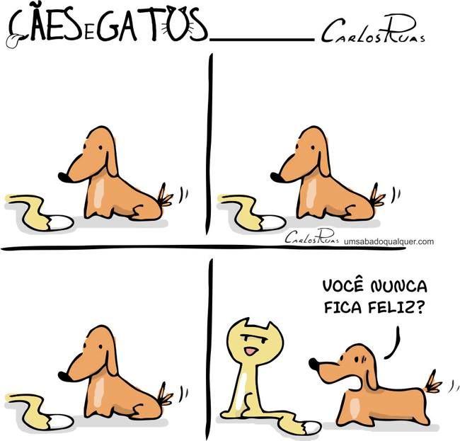 Cães e Gatos - Você nunca fica feliz? - Translation: Dogs and Cats - By Carlos Ruas You're never happy?