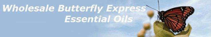 Wholesale Butterfly Express Essential Oils