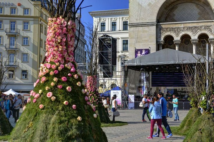 The main flower arrangements at Timfloralis, right in front of the Opera House. Exquisite, isn't it?