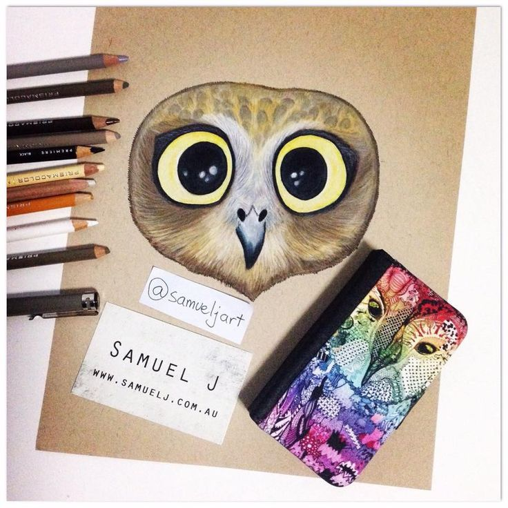 'Baby Owl'