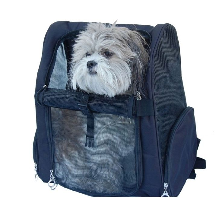Backpack carrier for dogs puppy carry travel pet holder - Overstock Shopping - The Best Prices on Portable Carriers
